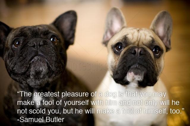Animal Life quote #1