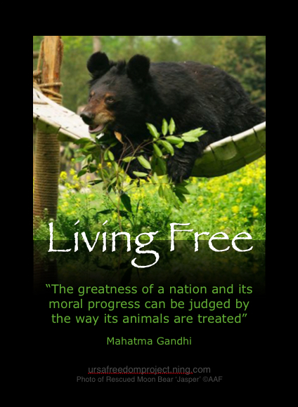 Animal Rights quote #1