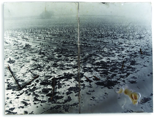 Anselm Kiefer's quote #8