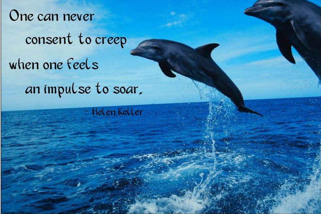 Aspiration quote #3
