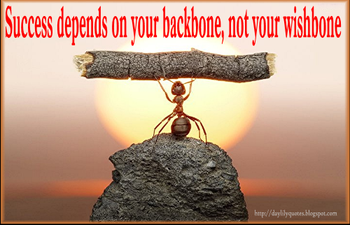 Backbone quote #2