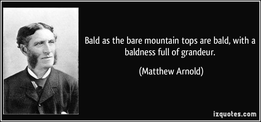 Bald quote #1