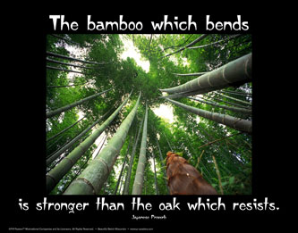 Bamboo quote #1