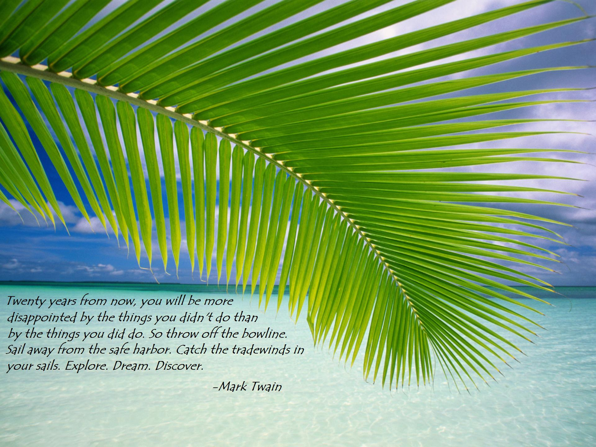 Beach quote #7