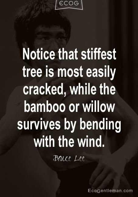 Bending quote #1