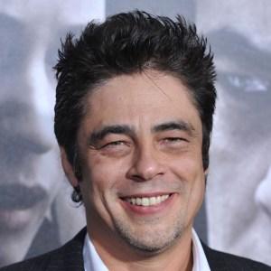 Benicio Del Toro's quote #4