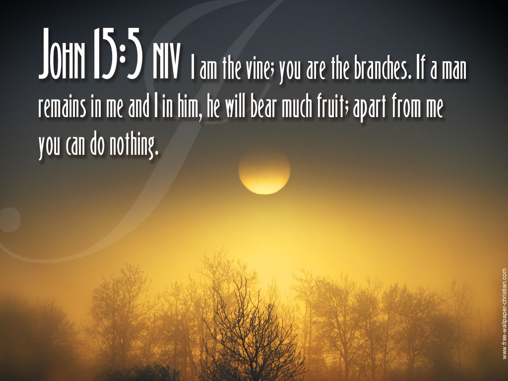 Bible quote #6