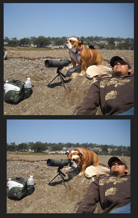 Binoculars quote #2