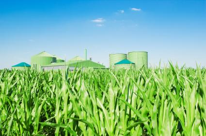 Biodiesel quote #2