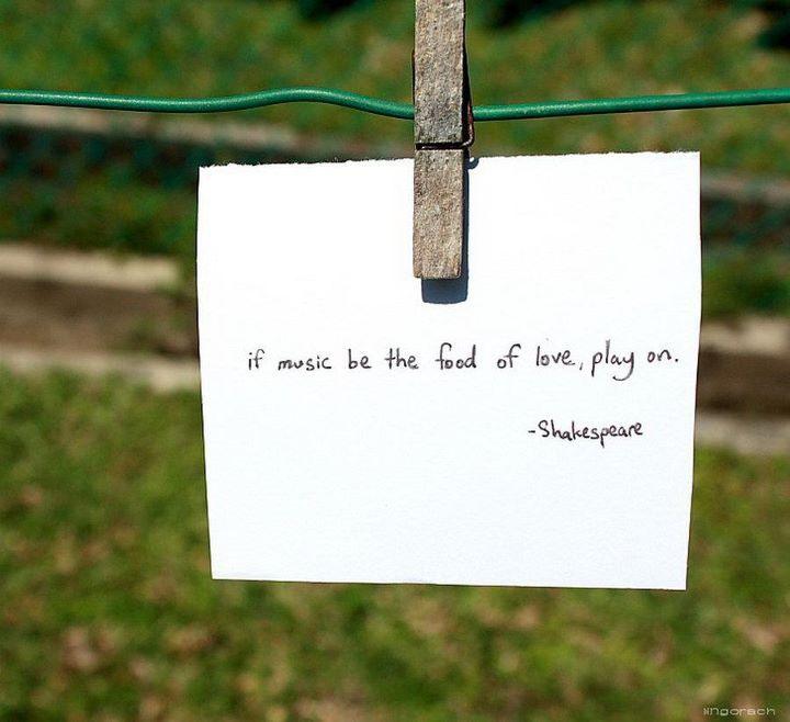 Bird quote #5