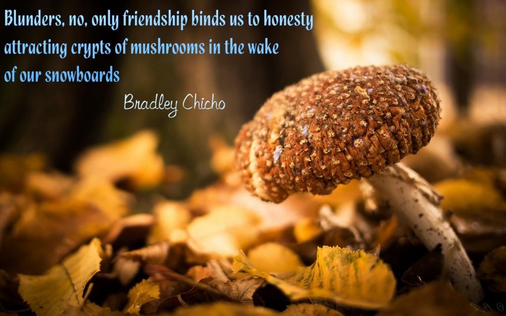 Bradley Chicho's quote #3