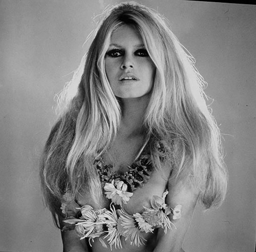 Brigitte Bardot's quote #5