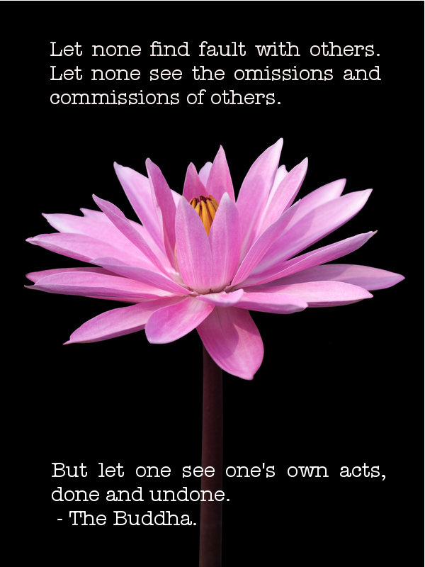 Buddhist quote #3