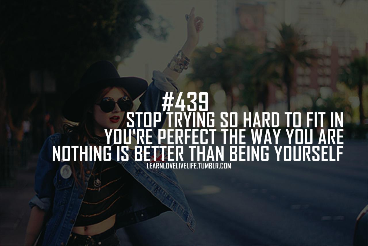 Bullies quote #1