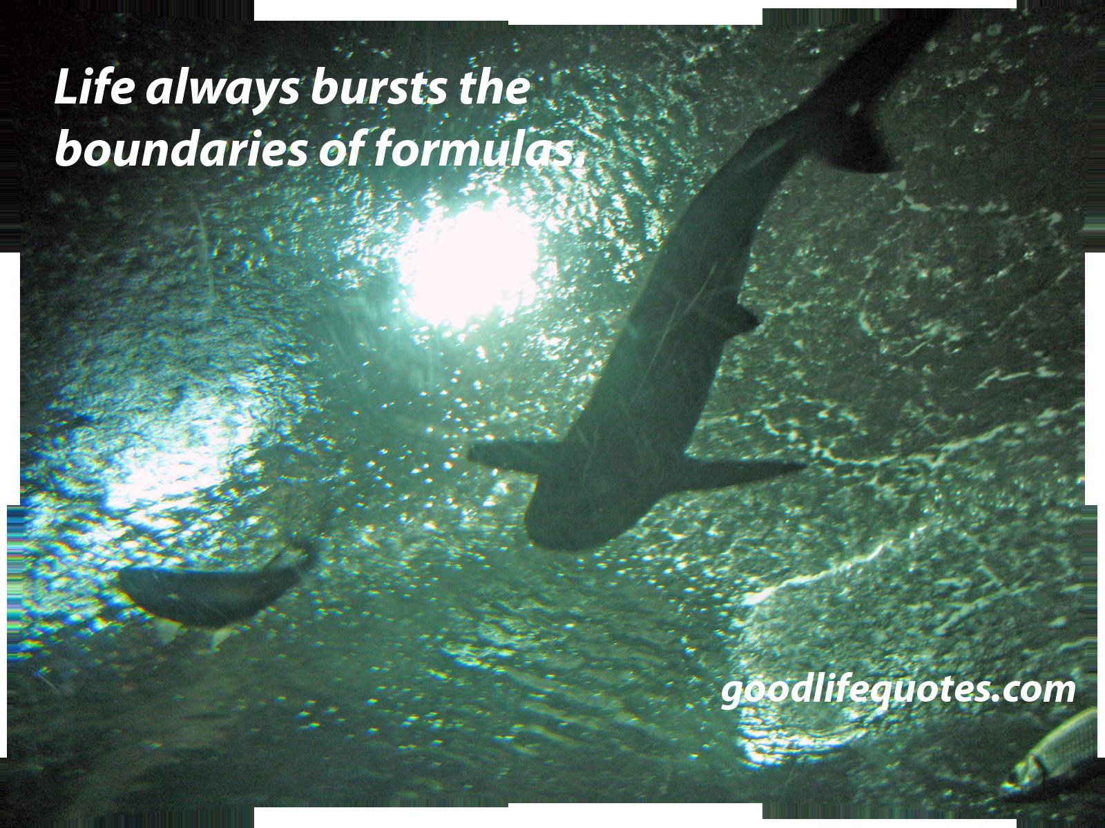 Bursts quote #1