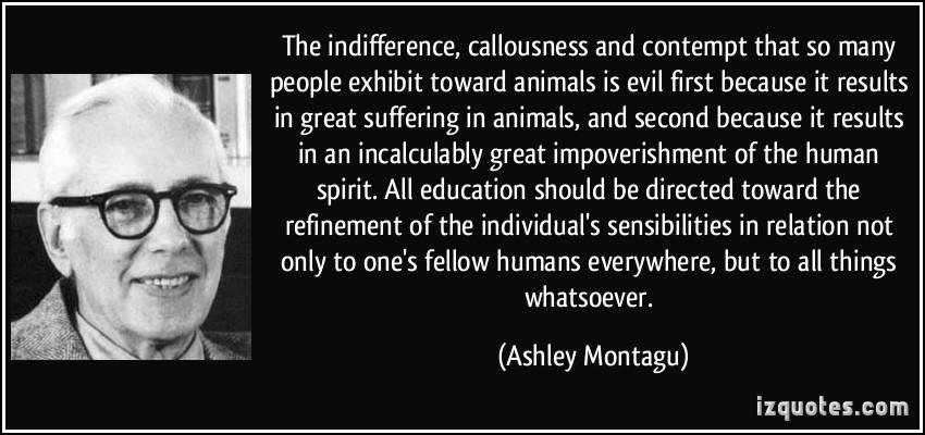 Callousness quote #1