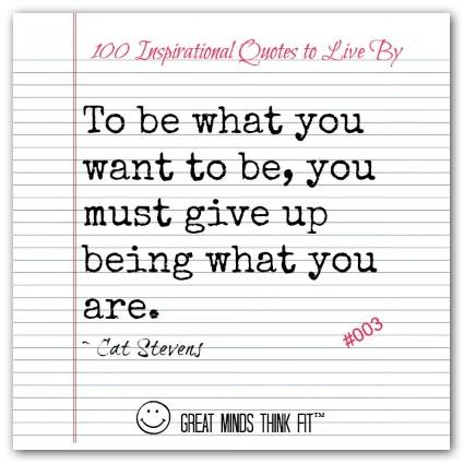 Cat Stevens quote #2