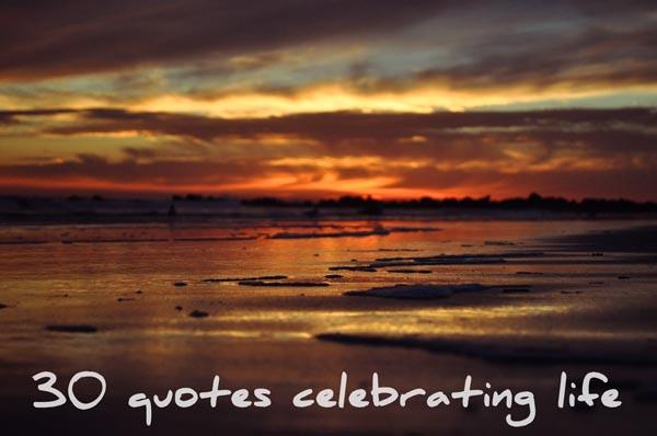 Celebrating quote #2