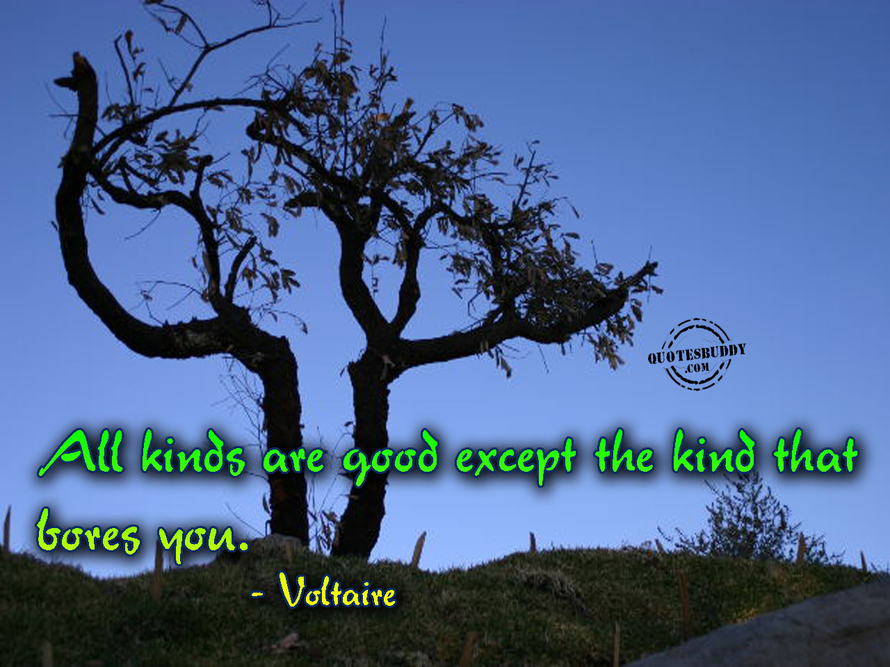 Certain Kinds quote #2