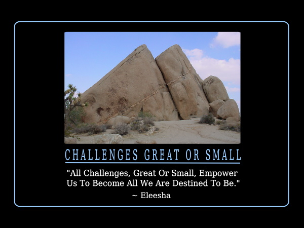 Challenges quote #6