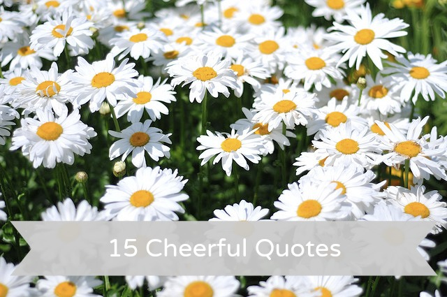 Cheerful quote #5