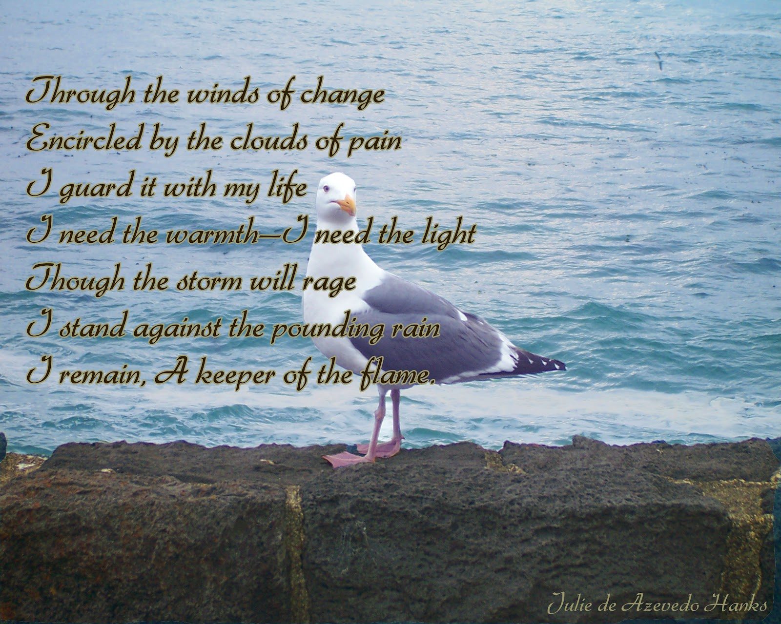 Coast quote #1