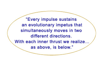 Cohesion quote #1
