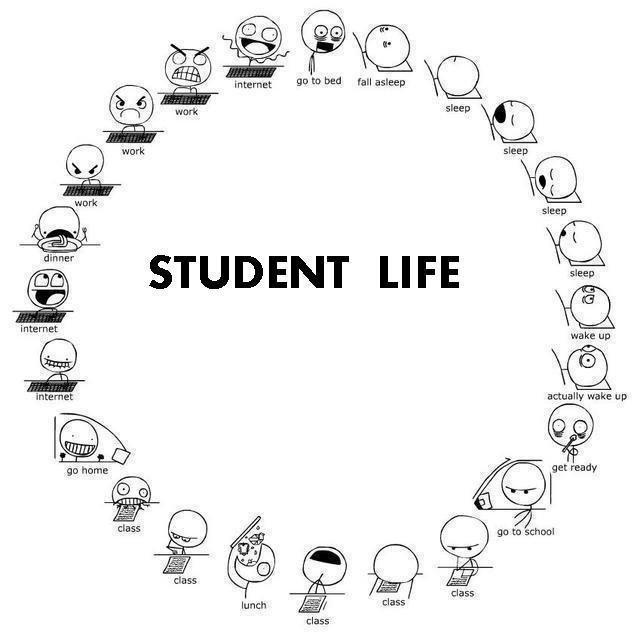 College Student quote #2