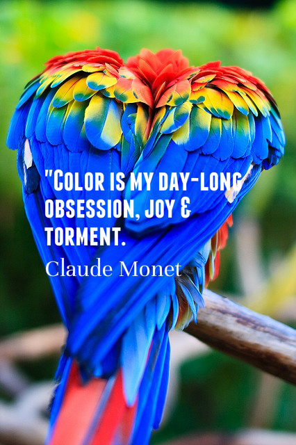 Color quote #1