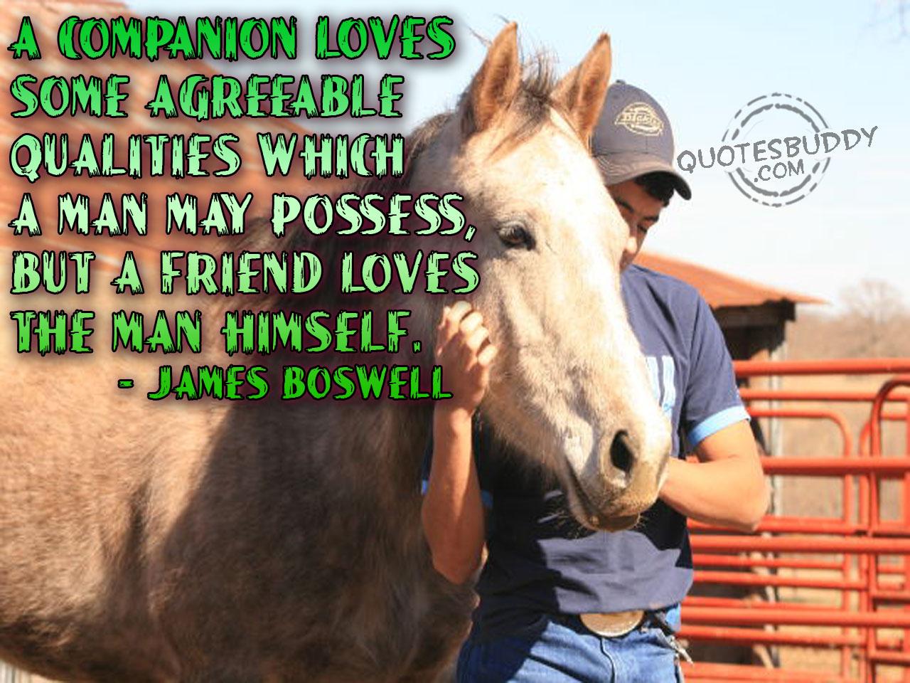 Companion quote #3