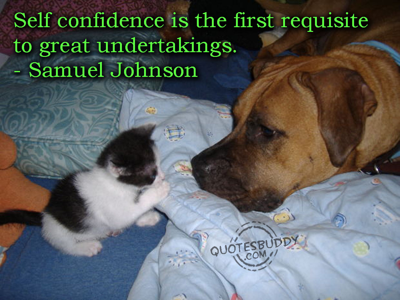 Confidant quote #2