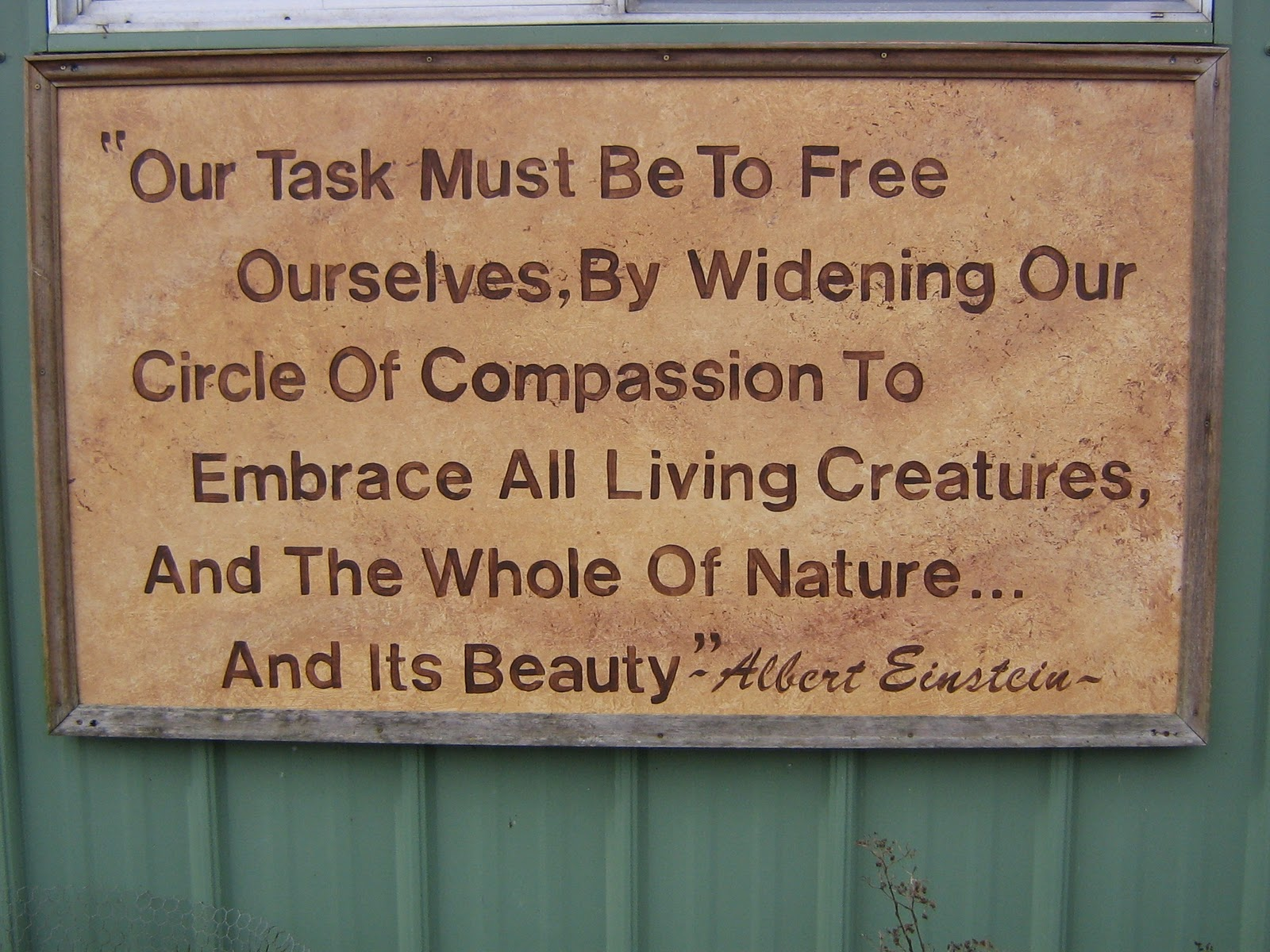 Conservation quote #1
