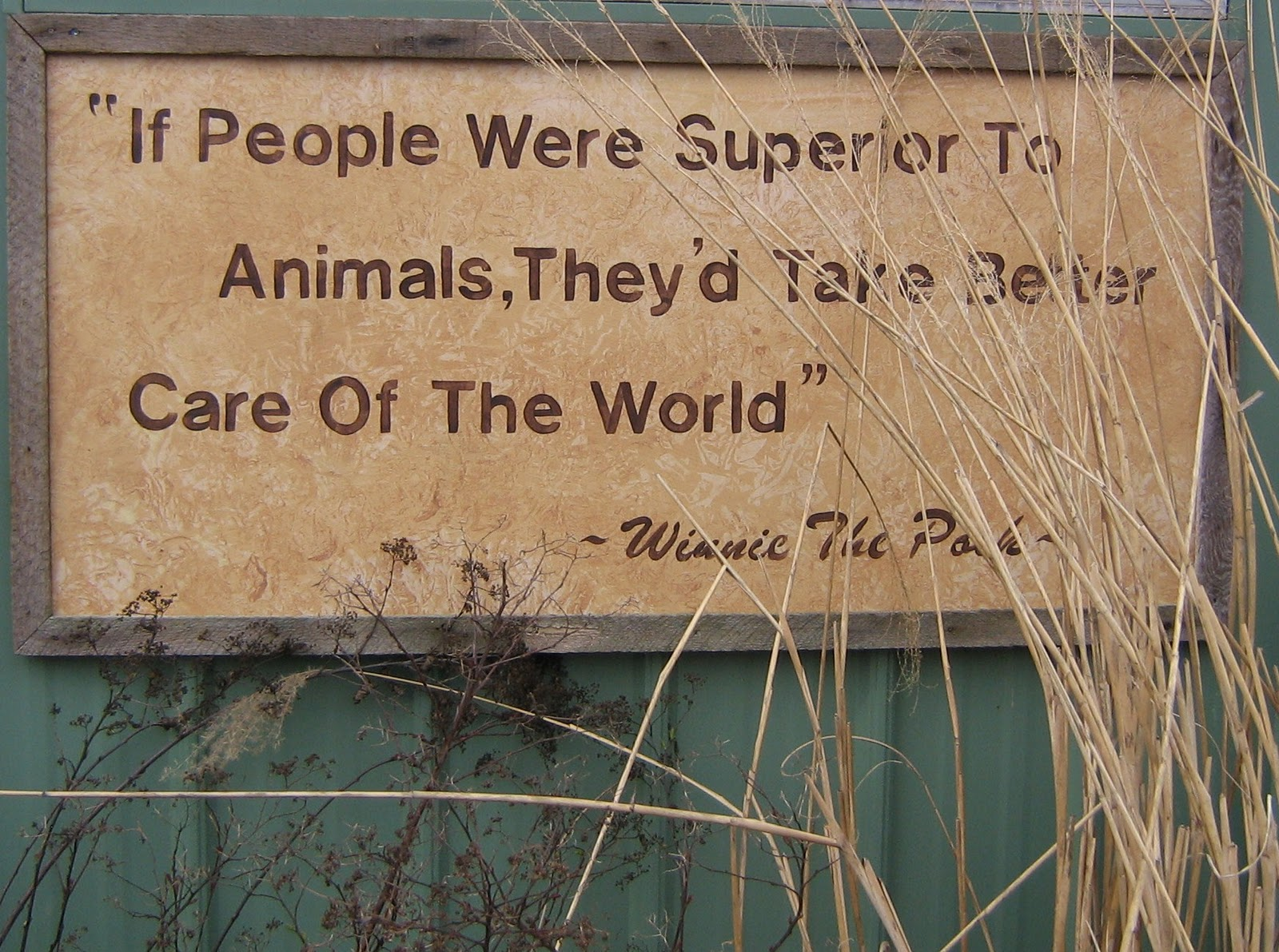 Conservation quote #2