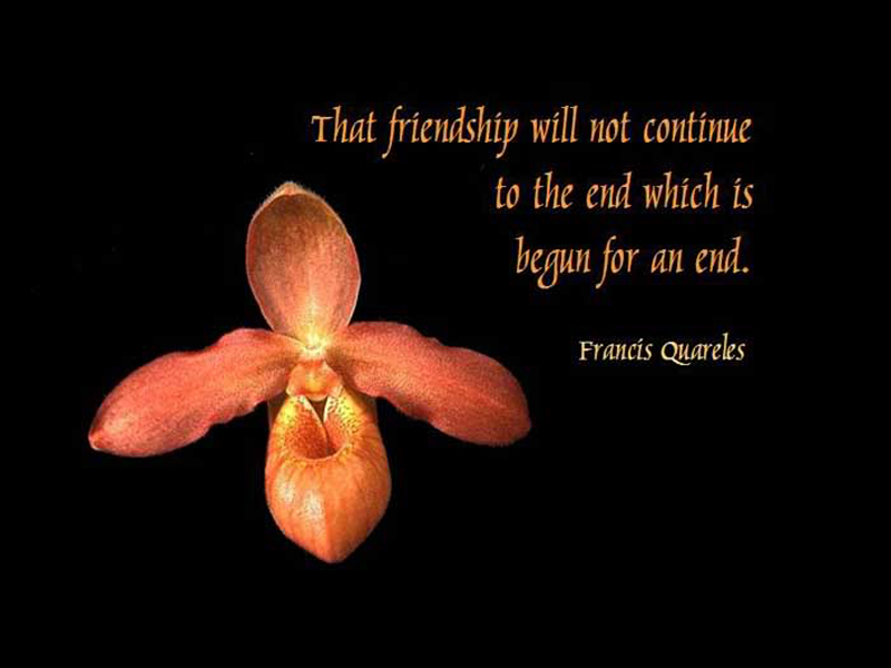 Continue quote #2