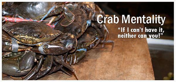Crab quote #1