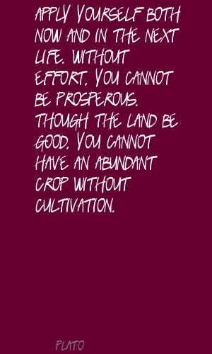 Cultivation quote #2