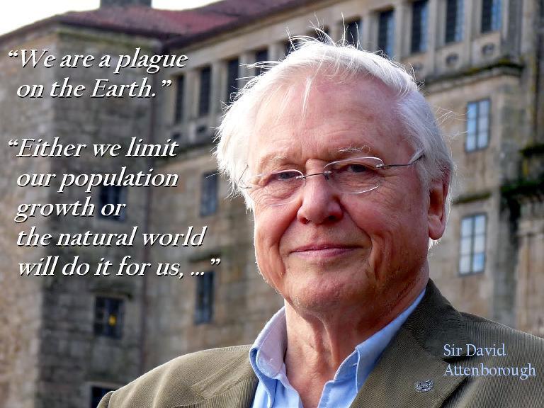 David Attenborough's quote #7