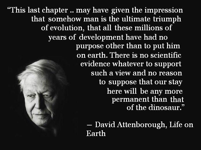 David Attenborough's quote #8