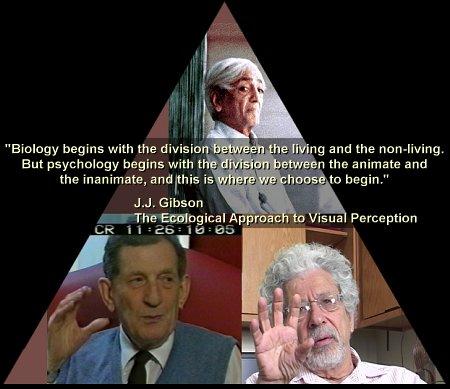 David Bohm's quote #3