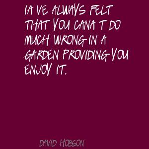 David Hobson's quote #1