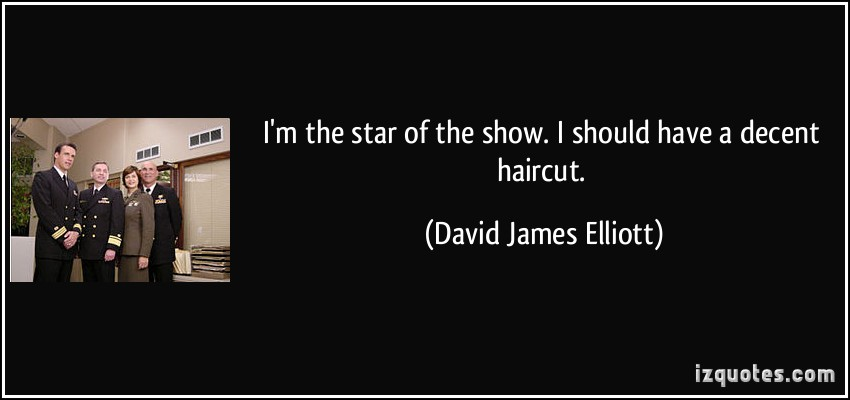 David James Elliott's quote #3