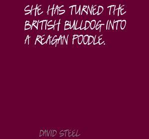 David Steel's quote #3