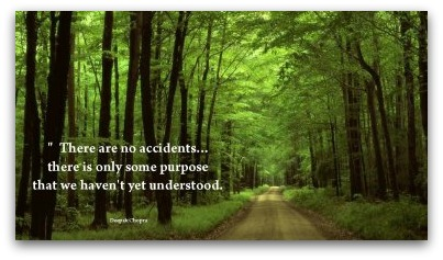 Deepak Chopra's quote #7