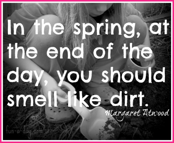 Dirt quote #3