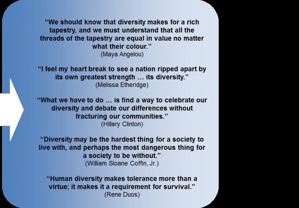 Diversity quote #4
