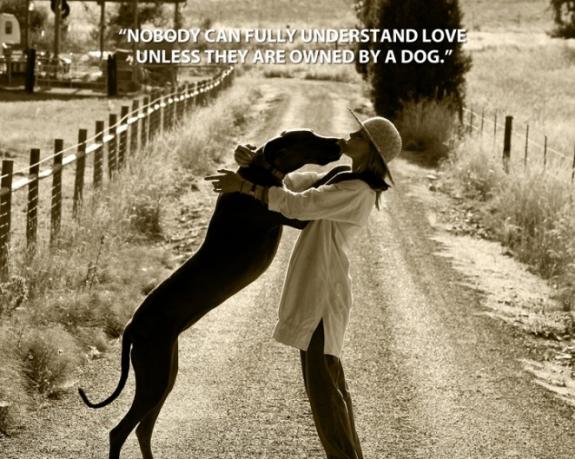Dog quote #5
