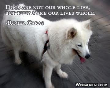 Dog quote #6