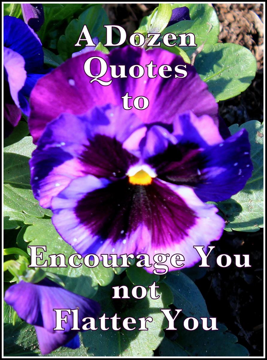 Dozen quote #2