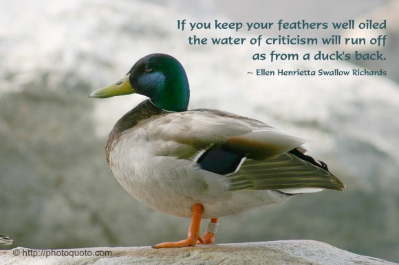 Duck quote #3
