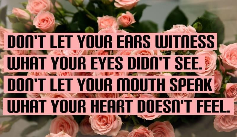 Ears quote #5